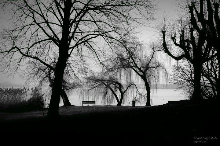 Schattenbäume von Karl Ludger Menke